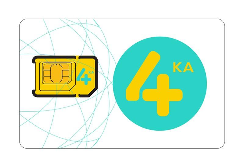 4ka-SIM
