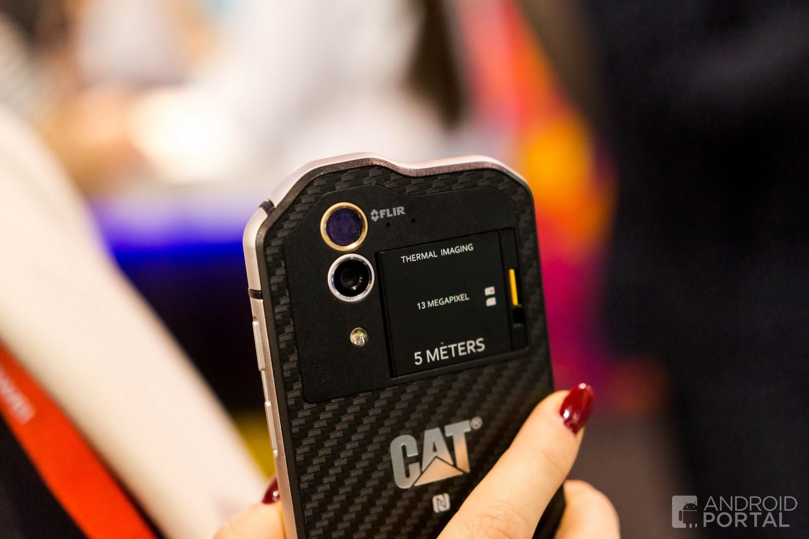 cat-s60-4