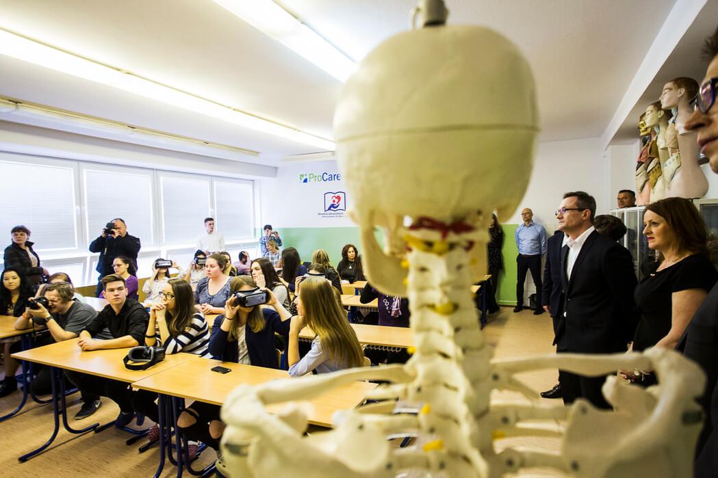 anatomiu 3D